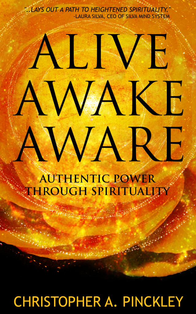 Alive Awake Aware: Authentic Power Through Spirituality ebook cover image