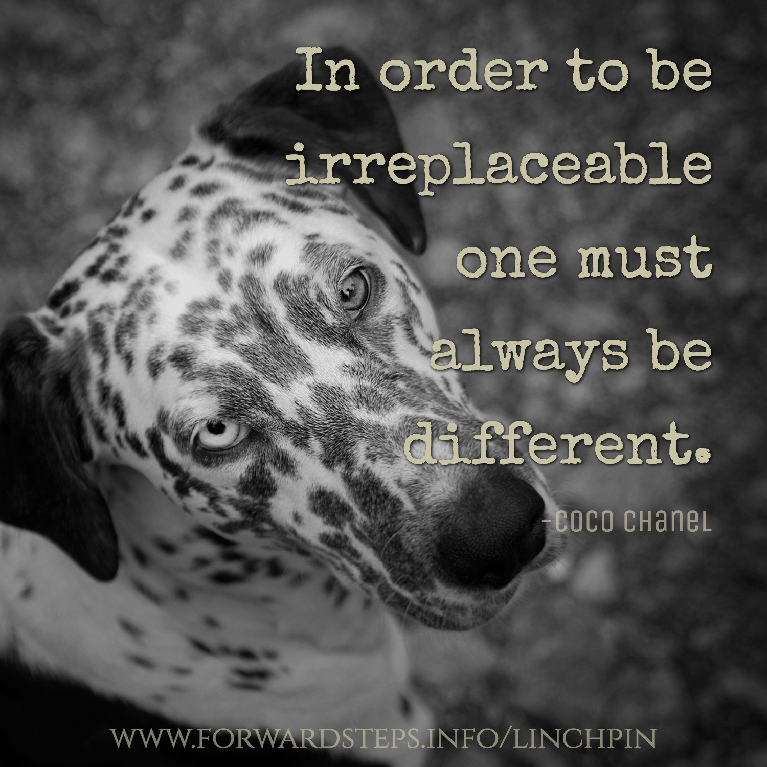 Be irreplaceable article image 1 1500